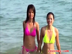 Beautiful  Youthful Thai ladies in